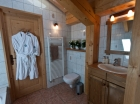 En suite Bathroom in Chalet Eterle