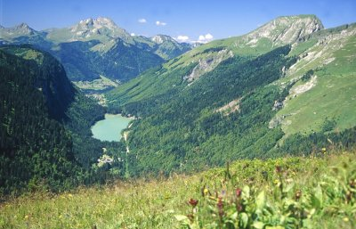 Views over Lac Montriond
