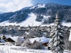 Ski in Ski out chalet
